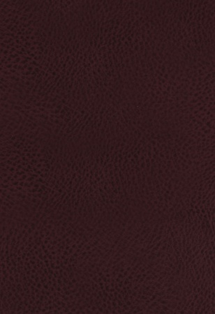 KJV Study Bible (Bonded Leather, Burgundy, Full-Color)